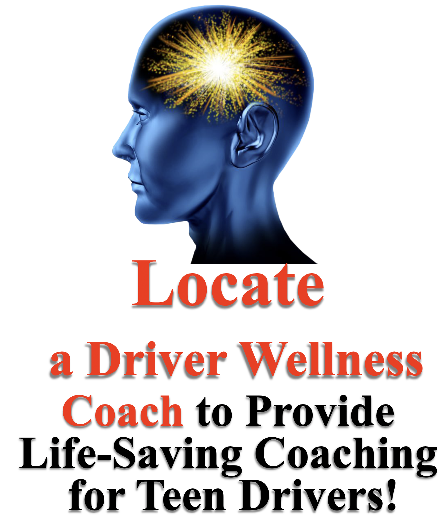 Driver Wellness Coach